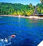 Beach Snorkeling